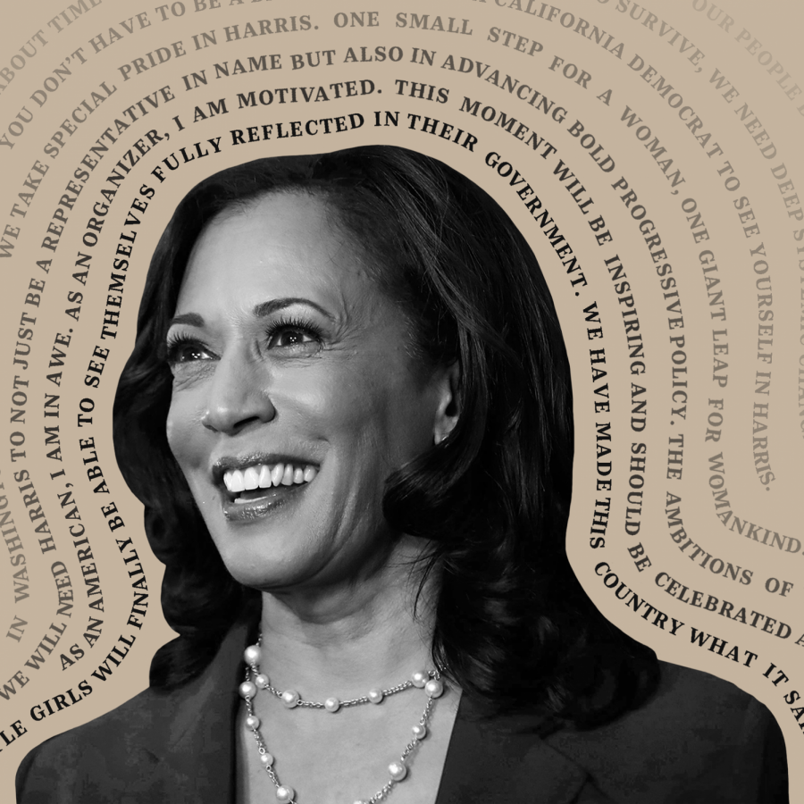 One Small Step for Kamala, One Giant Leap for Womankind
